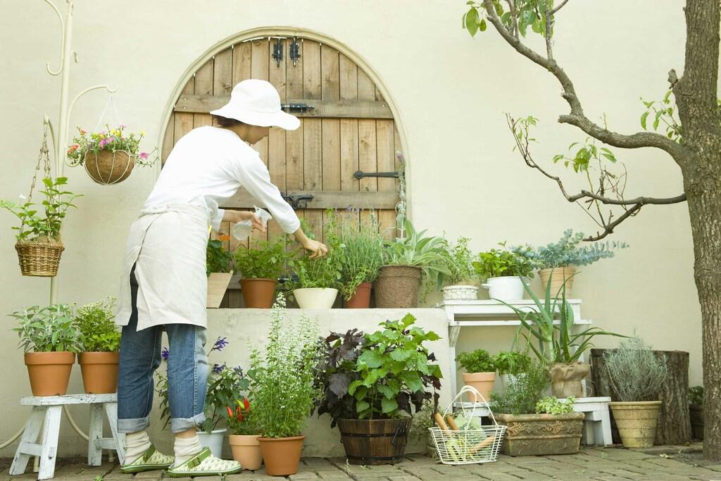 庭のある平屋で暮らそう!のイメージ