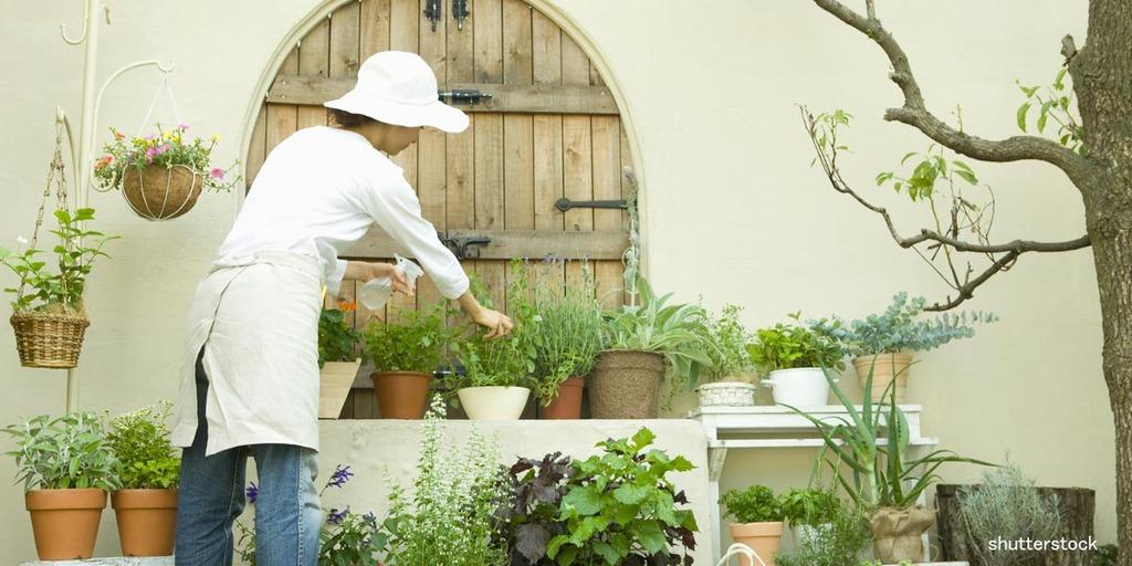 会場内セミナー「庭のある平屋で暮らそう!」のイメージ