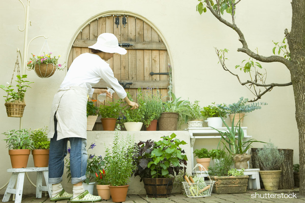 家の中でのくつろぎ空間~中庭のある生活~のイメージ
