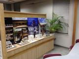 アーキテクツ・スタジオ・ジャパン (ASJ) 西湘スタジオの内観の写真