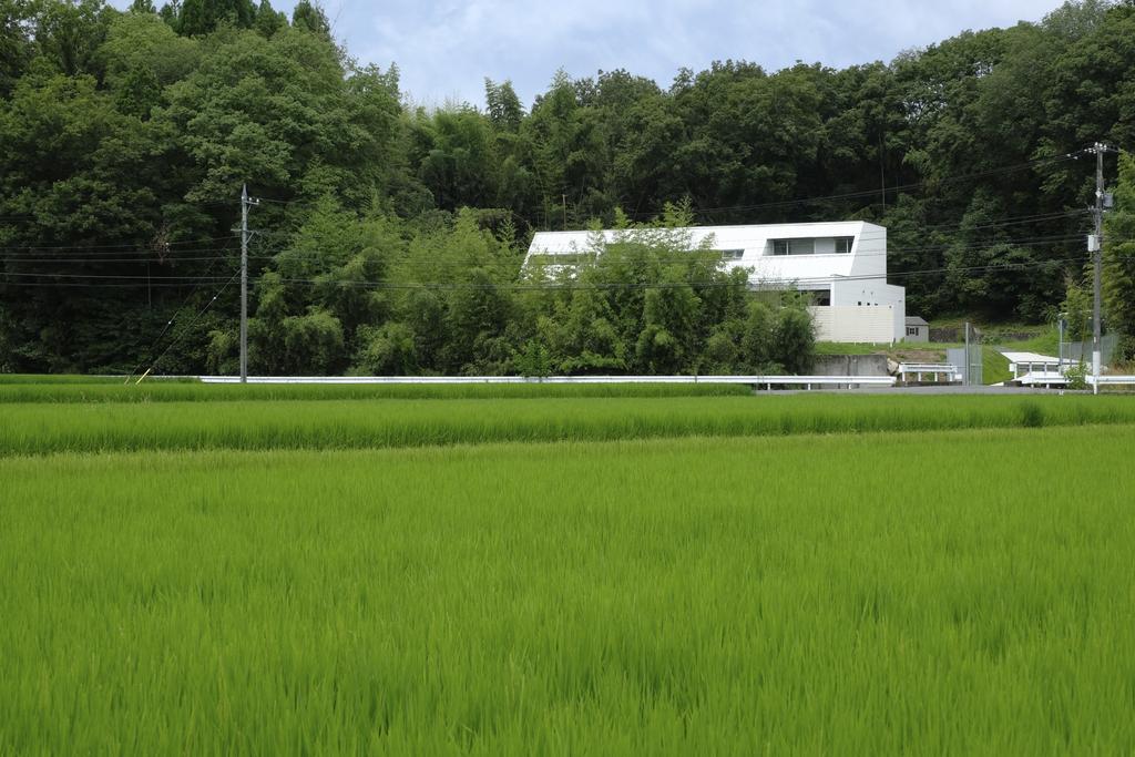 森の家の写真
