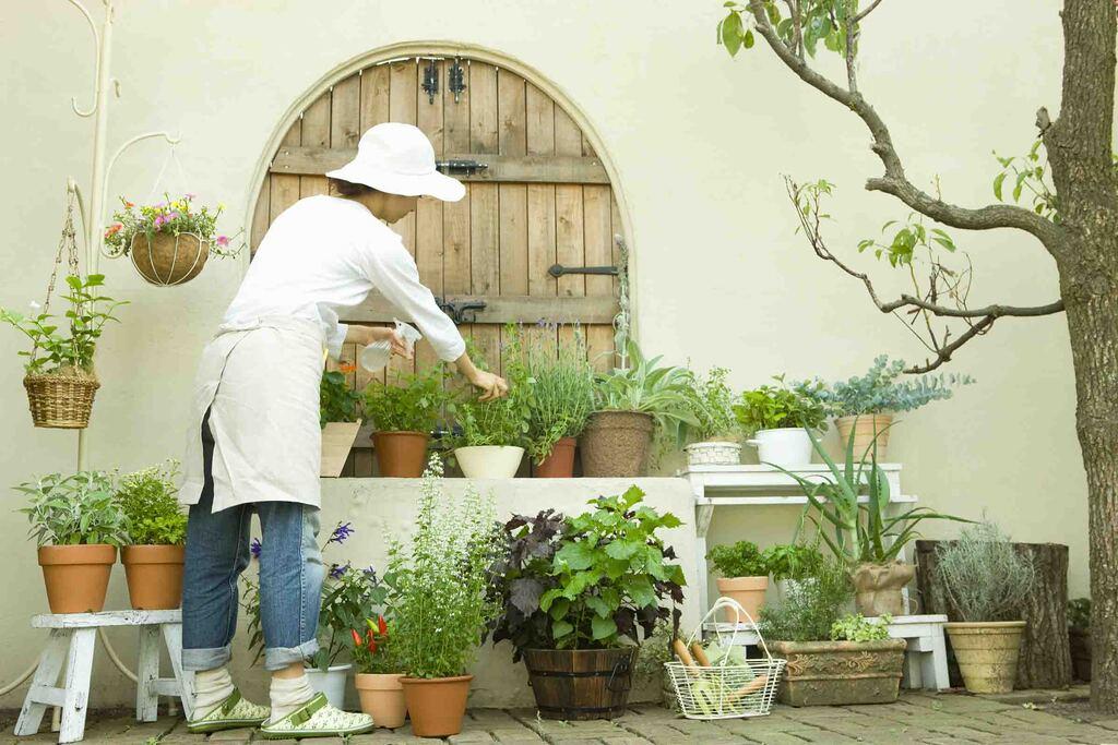 平屋を建てよう!庭と暮らそう!~我家が一番の居心地空間へのイメージ